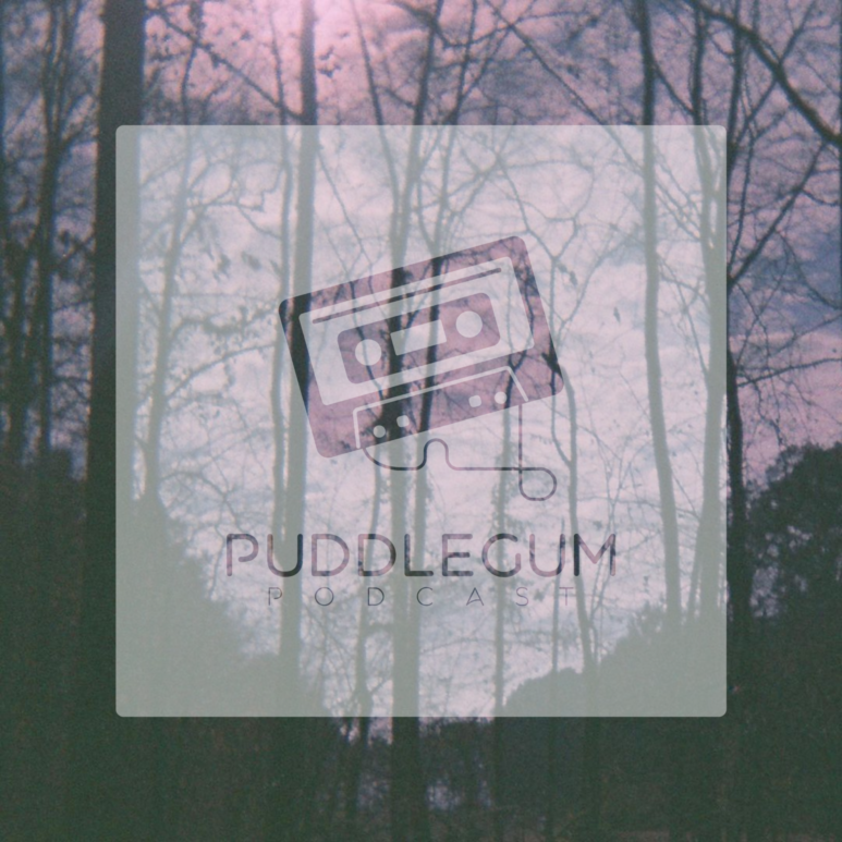 Puddlegum Podcast: Cathedral Bells Interview (Episode 1)